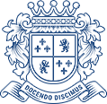 Институт профессионального образования